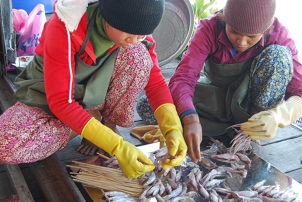 Women Fish Processing Activities